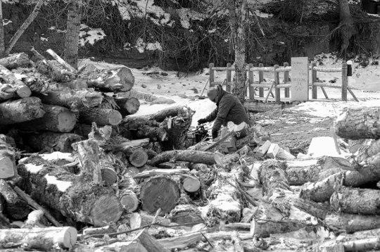 greg bowers clearing debris_DSC2335jpg